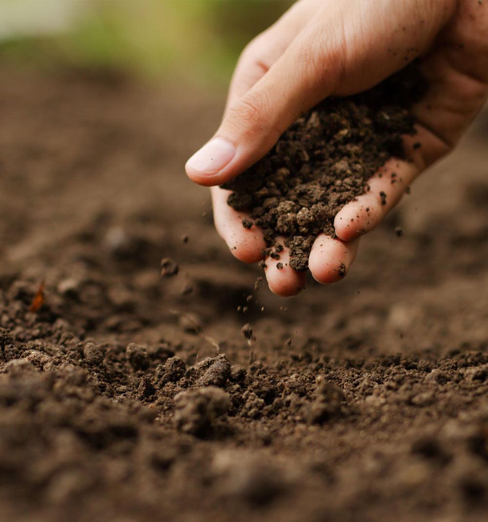 soil_02